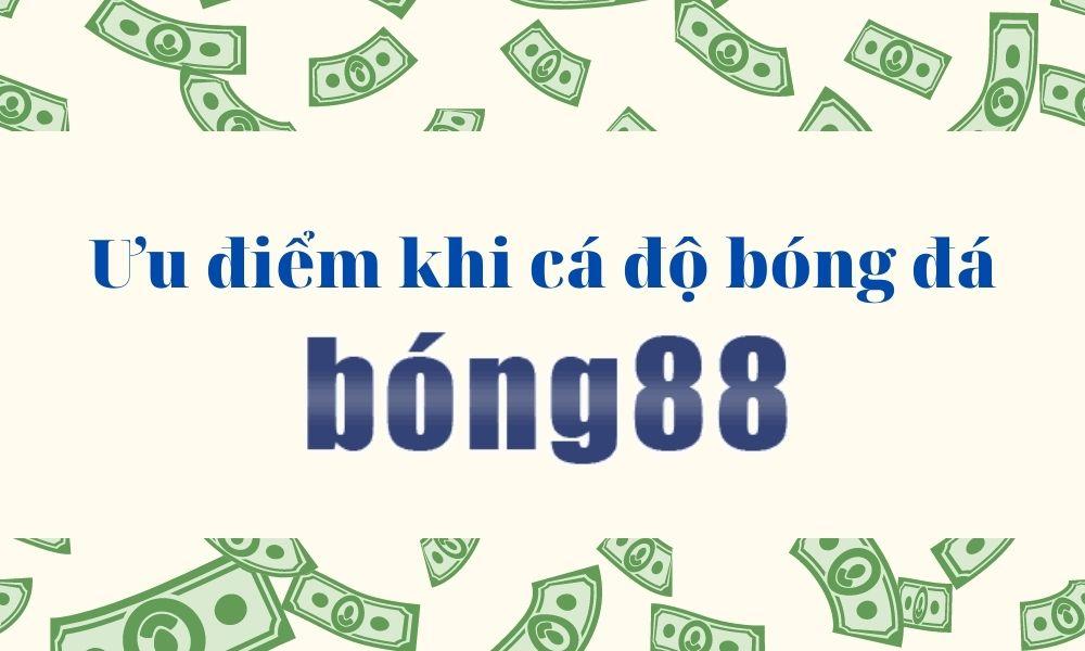 Vì sao nên chơi cá cược thể thao tại Bong88