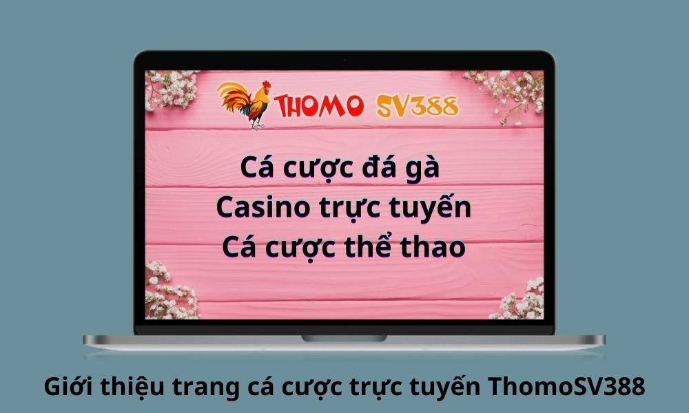 Giới thiệu trang cá cược trực tuyến ThomoSV388